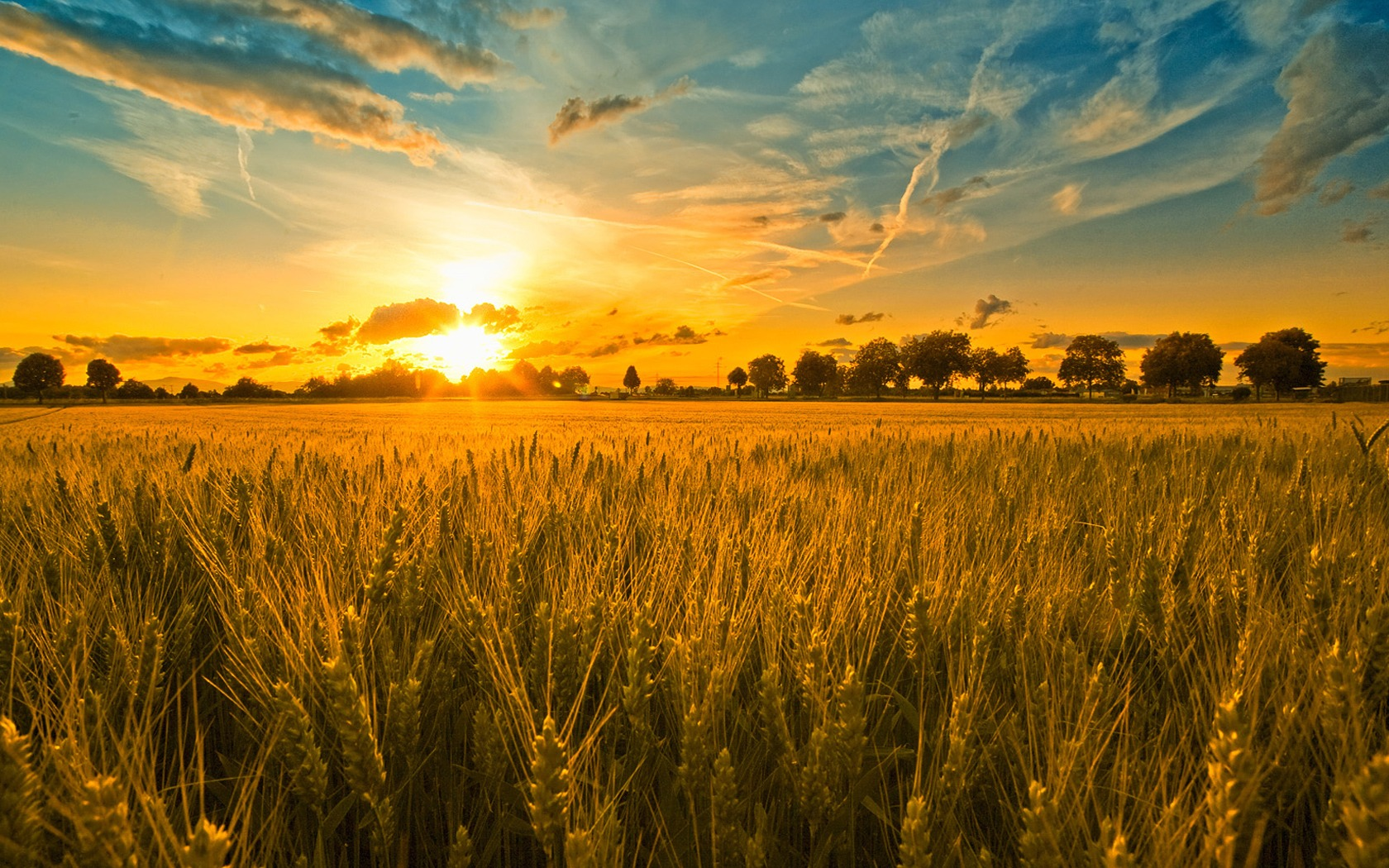 http://www.trinitycanrc.org/wp-content/uploads/2015/08/wheat_field_and_the_rising_sun_1347307083.jpg